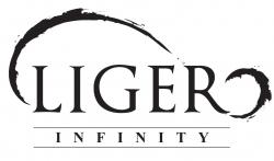 Liger Infinity Sdn Bhd
