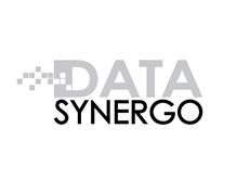 Data Synergo Sdn Bhd