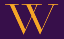 VV Consulting Group